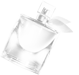 Eau de toilette ambre reminiscence parfum femme for Fragranze francesi